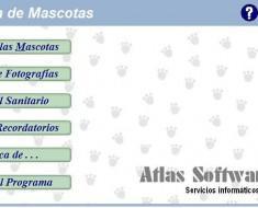 Captura del programa Gestión de Mascotas