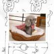 Patrón de abrigo para poodle